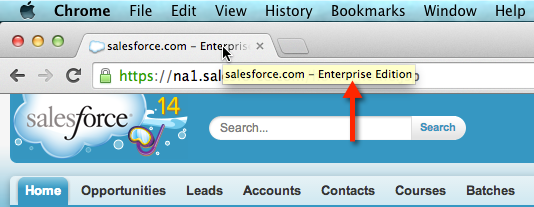 How to find out the edition and release of a Salesforce instance?