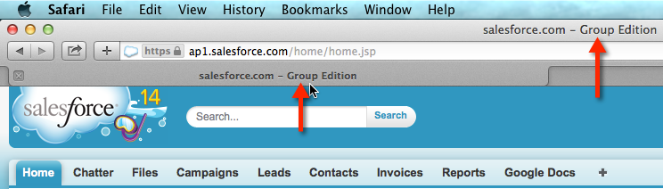 Check Salesforce Edition in Safari